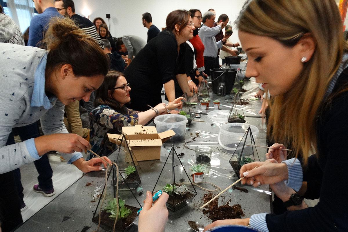 Organisation d'un team building développement durable pour entreprise : Jardin urbain - image 3